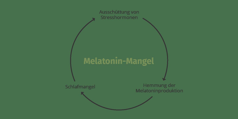 GreenDoc_Melatoninmangel_Prozess